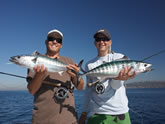 Inshore Fishing, On the Fly Fishing Charters, California Shark Fishing, San Diego, CA