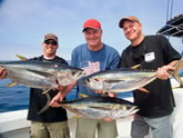 Offshore Fishing, On the Fly Fishing Charters, California Shark Fishing, San Diego, CA