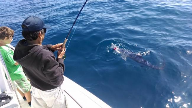 Galvan reel inventor Boni Galvan comes shark fishing