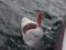 Shark fly fishing in San Diego